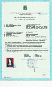 Business license PT ECP