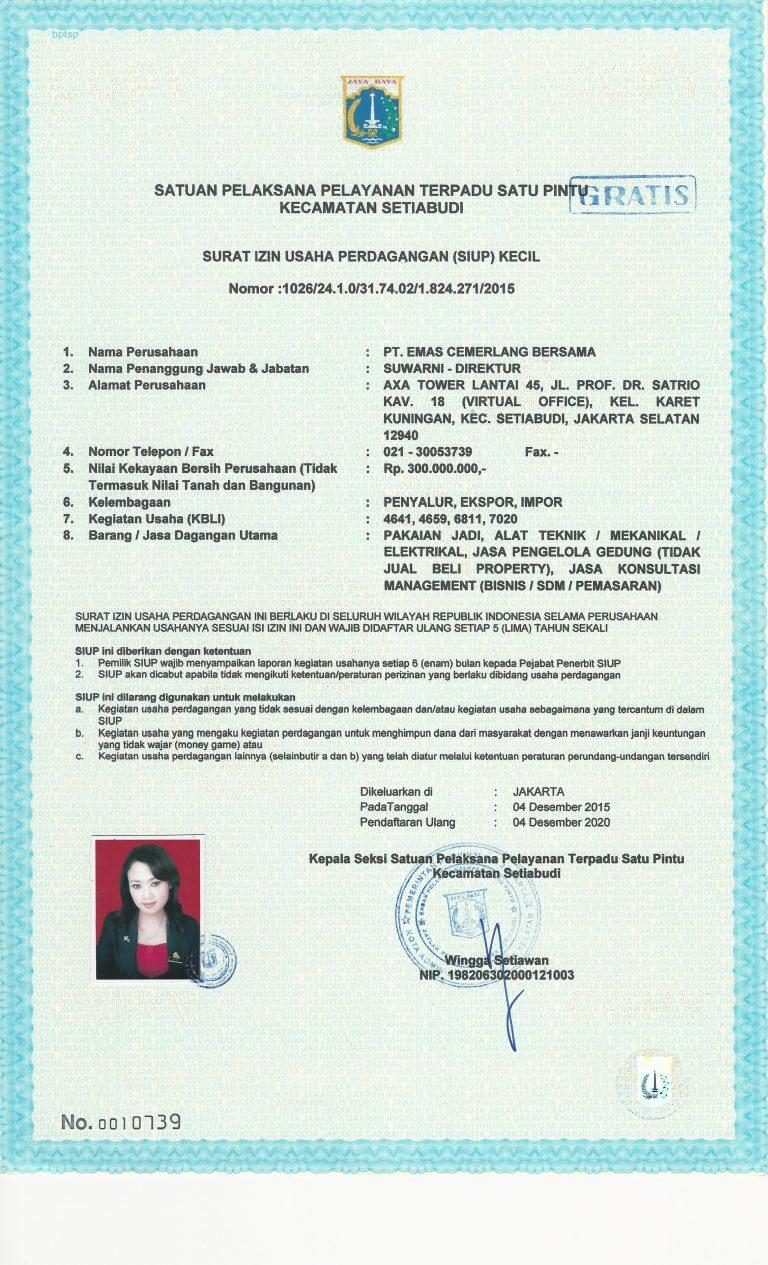 Business license PT ECP